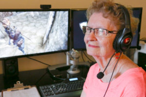 What it's like to become a YouTube gaming Sensation at 80 years old